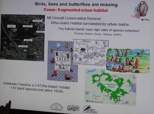 Pollinator Link