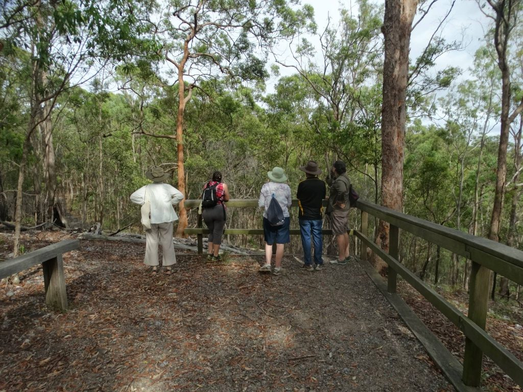 bushwalkers at Whites Hill