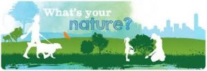 What's Your Nature?