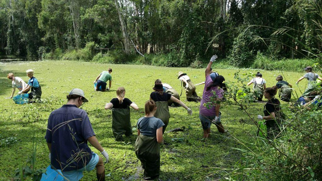 Students in Tingalpa Lagoon