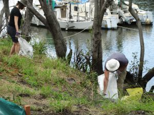 Volunteers cleaning up at Gibson Island, Murarrie
