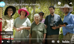 citizen science video