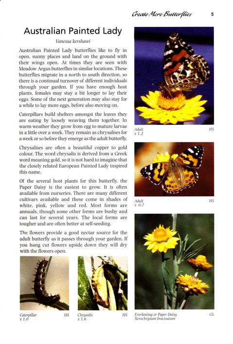 Create more butterflies - book by Frank Jordan and Helen Schwencke