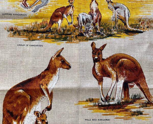 Vintage tea towel - kangaroos