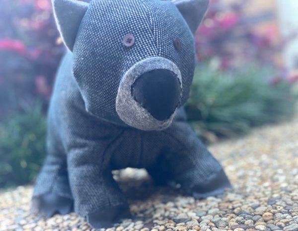 Wayne the wombat | Carindale, Brisbane